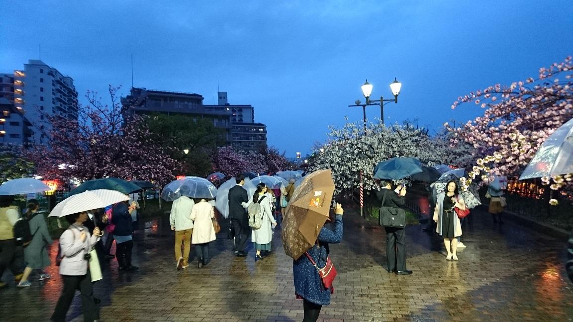 021 大阪造幣局(桜の通り抜け)(大阪府大阪市)